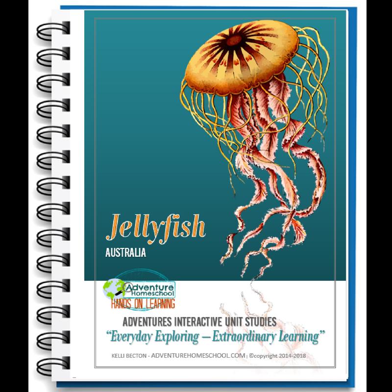 Jellyfish Unit Study