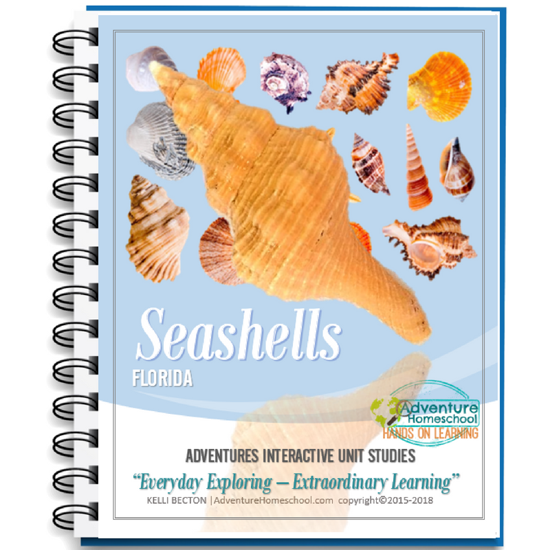 Seashelll Unit Study - Florida